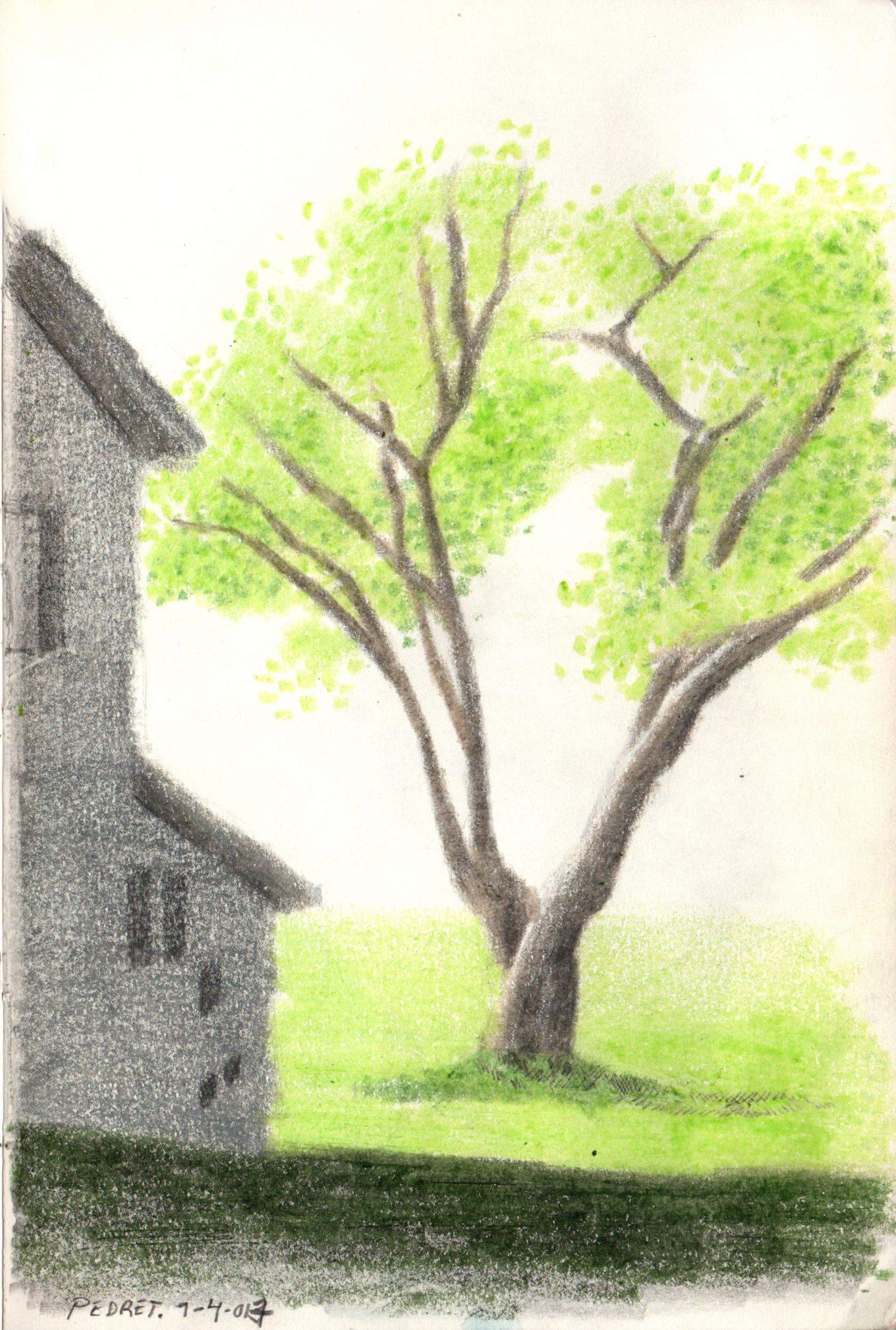 pedret-grafito-ceras-alejandra-caballero-dibujo-casa-árbol