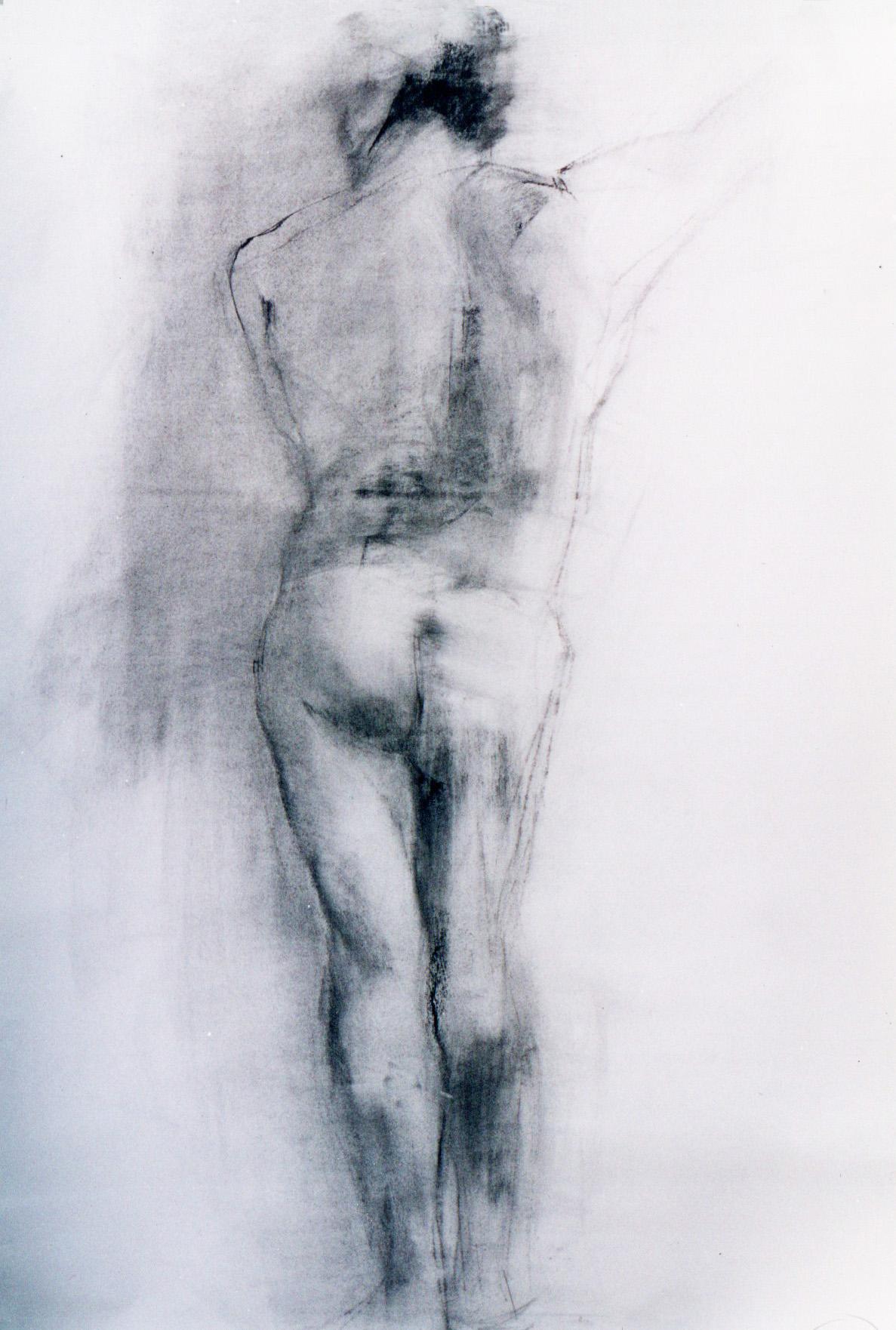 modelo-carboncillo-alejandra-caballero-dibujo-hombre-desnudo-de-espaldas